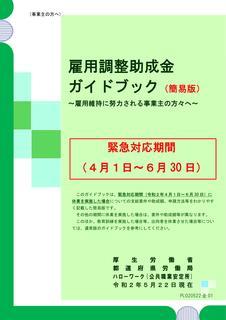 コロナ雇調金ガイドR020522.jpg