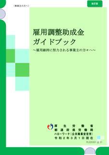 雇調金ガイド.jpg