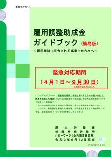 雇調金ガイドR020612.jpg